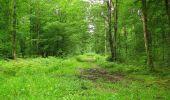 Randonnée Marche PIERREFONDS - en forêt de Compiègne_1_étang de St-Périne_la Michelette - Photo 50
