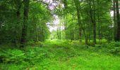 Randonnée Marche PIERREFONDS - en forêt de Compiègne_1_étang de St-Périne_la Michelette - Photo 52