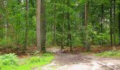 Randonnée Marche PIERREFONDS - en forêt de Compiègne_1_étang de St-Périne_la Michelette - Photo 97