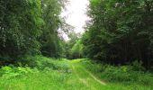 Randonnée Marche PIERREFONDS - en forêt de Compiègne_1_étang de St-Périne_la Michelette - Photo 123