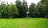 Randonnée Marche PIERREFONDS - en forêt de Compiègne_1_étang de St-Périne_la Michelette - Photo 99
