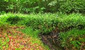 Randonnée Marche PIERREFONDS - en forêt de Compiègne_1_étang de St-Périne_la Michelette - Photo 54