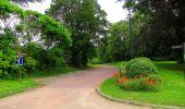 Randonnée Marche PIERREFONDS - en forêt de Compiègne_1_étang de St-Périne_la Michelette - Photo 21