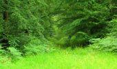 Randonnée Marche PIERREFONDS - en forêt de Compiègne_1_étang de St-Périne_la Michelette - Photo 67