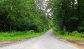 Randonnée Marche PIERREFONDS - en forêt de Compiègne_1_étang de St-Périne_la Michelette - Photo 59