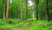 Randonnée Marche PIERREFONDS - en forêt de Compiègne_1_étang de St-Périne_la Michelette - Photo 53