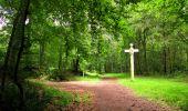 Randonnée Marche PIERREFONDS - en forêt de Compiègne_1_étang de St-Périne_la Michelette - Photo 129