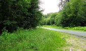 Randonnée Marche PIERREFONDS - en forêt de Compiègne_1_étang de St-Périne_la Michelette - Photo 122