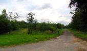 Randonnée Marche PIERREFONDS - en forêt de Compiègne_1_étang de St-Périne_la Michelette - Photo 57