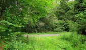 Randonnée Marche PIERREFONDS - en forêt de Compiègne_1_étang de St-Périne_la Michelette - Photo 87