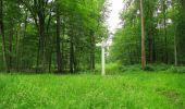 Randonnée Marche PIERREFONDS - en forêt de Compiègne_1_étang de St-Périne_la Michelette - Photo 48