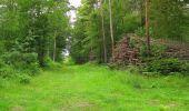 Randonnée Marche PIERREFONDS - en forêt de Compiègne_1_étang de St-Périne_la Michelette - Photo 28