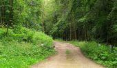Randonnée Marche PIERREFONDS - en forêt de Compiègne_1_étang de St-Périne_la Michelette - Photo 126