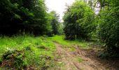 Randonnée Marche PIERREFONDS - en forêt de Compiègne_1_étang de St-Périne_la Michelette - Photo 147