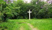 Randonnée Marche PIERREFONDS - en forêt de Compiègne_1_étang de St-Périne_la Michelette - Photo 134