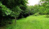 Randonnée Marche PIERREFONDS - en forêt de Compiègne_1_étang de St-Périne_la Michelette - Photo 106