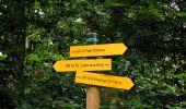 Randonnée Marche PIERREFONDS - en forêt de Compiègne_1_étang de St-Périne_la Michelette - Photo 148