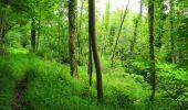 Trail Walk LONGPONT - en foret de Retz_48_les bois des Prêtres et du Mausolée - Photo 20