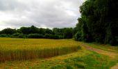 Trail Walk LONGPONT - en foret de Retz_48_les bois des Prêtres et du Mausolée - Photo 4