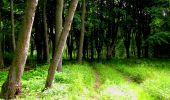 Trail Walk LONGPONT - en foret de Retz_48_les bois des Prêtres et du Mausolée - Photo 12