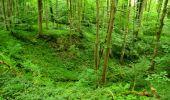 Trail Walk LONGPONT - en foret de Retz_48_les bois des Prêtres et du Mausolée - Photo 22