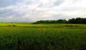 Trail Walk LONGPONT - en foret de Retz_48_les bois des Prêtres et du Mausolée - Photo 10
