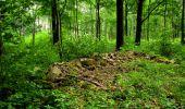 Trail Walk LONGPONT - en foret de Retz_48_les bois des Prêtres et du Mausolée - Photo 14