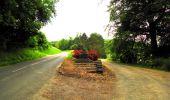 Trail Walk LONGPONT - en foret de Retz_48_les bois des Prêtres et du Mausolée - Photo 24