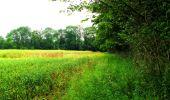 Trail Walk LONGPONT - en foret de Retz_48_les bois des Prêtres et du Mausolée - Photo 9