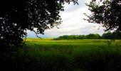 Trail Walk LONGPONT - en foret de Retz_48_les bois des Prêtres et du Mausolée - Photo 6