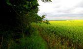 Trail Walk LONGPONT - en foret de Retz_48_les bois des Prêtres et du Mausolée - Photo 8