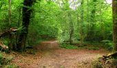 Trail Walk LONGPONT - en foret de Retz_48_les bois des Prêtres et du Mausolée - Photo 21