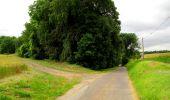 Trail Walk LONGPONT - en foret de Retz_48_les bois des Prêtres et du Mausolée - Photo 3