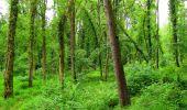 Trail Walk LONGPONT - en foret de Retz_48_les bois des Prêtres et du Mausolée - Photo 19