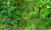 Trail Walk LONGPONT - en foret de Retz_48_les bois des Prêtres et du Mausolée - Photo 11