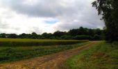 Trail Walk LONGPONT - en foret de Retz_48_les bois des Prêtres et du Mausolée - Photo 5