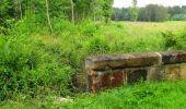 Randonnée Marche SAINT-JEAN-AUX-BOIS - en forêt de Compiègne_2_ruines gallo-romaines de Champlieu_les Petits Monts - Photo 205