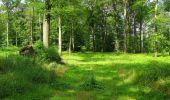 Randonnée Marche SAINT-JEAN-AUX-BOIS - en forêt de Compiègne_2_ruines gallo-romaines de Champlieu_les Petits Monts - Photo 179