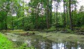 Randonnée Marche SAINT-JEAN-AUX-BOIS - en forêt de Compiègne_2_ruines gallo-romaines de Champlieu_les Petits Monts - Photo 158