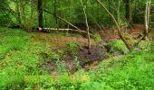 Randonnée Marche SAINT-JEAN-AUX-BOIS - en forêt de Compiègne_2_ruines gallo-romaines de Champlieu_les Petits Monts - Photo 18