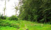 Randonnée Marche SAINT-JEAN-AUX-BOIS - en forêt de Compiègne_2_ruines gallo-romaines de Champlieu_les Petits Monts - Photo 224