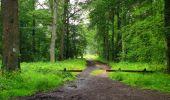 Randonnée Marche SAINT-JEAN-AUX-BOIS - en forêt de Compiègne_2_ruines gallo-romaines de Champlieu_les Petits Monts - Photo 231
