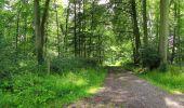 Randonnée Marche SAINT-JEAN-AUX-BOIS - en forêt de Compiègne_2_ruines gallo-romaines de Champlieu_les Petits Monts - Photo 178