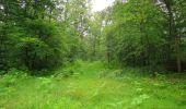 Randonnée Marche SAINT-JEAN-AUX-BOIS - en forêt de Compiègne_2_ruines gallo-romaines de Champlieu_les Petits Monts - Photo 252