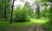 Randonnée Marche SAINT-JEAN-AUX-BOIS - en forêt de Compiègne_2_ruines gallo-romaines de Champlieu_les Petits Monts - Photo 142