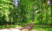 Randonnée Marche SAINT-JEAN-AUX-BOIS - en forêt de Compiègne_2_ruines gallo-romaines de Champlieu_les Petits Monts - Photo 156
