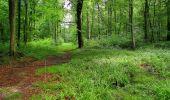 Randonnée Marche SAINT-JEAN-AUX-BOIS - en forêt de Compiègne_2_ruines gallo-romaines de Champlieu_les Petits Monts - Photo 102