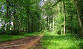 Randonnée Marche SAINT-JEAN-AUX-BOIS - en forêt de Compiègne_2_ruines gallo-romaines de Champlieu_les Petits Monts - Photo 97