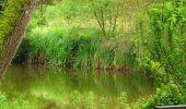 Randonnée Marche SAINT-JEAN-AUX-BOIS - en forêt de Compiègne_2_ruines gallo-romaines de Champlieu_les Petits Monts - Photo 8