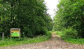 Randonnée Marche SAINT-JEAN-AUX-BOIS - en forêt de Compiègne_2_ruines gallo-romaines de Champlieu_les Petits Monts - Photo 187